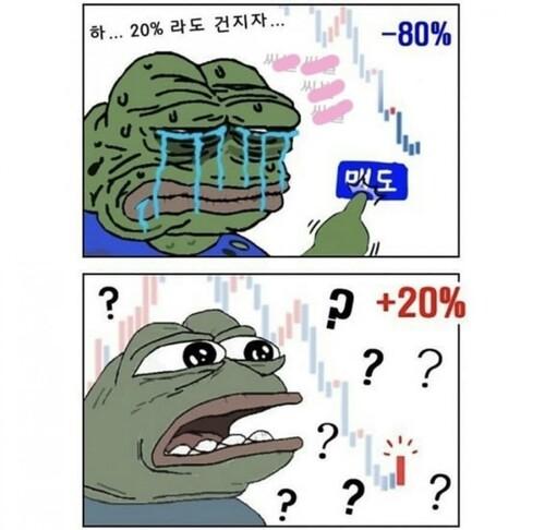 비트코인 개구리 슬개짤 슬픈 코인 주식 페페 떡락 떡상 개미털기 손절 매도 후회